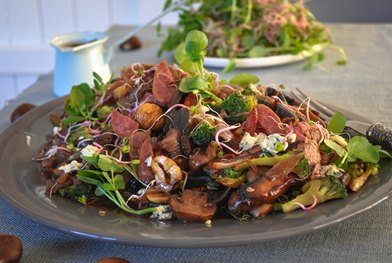 Fuet Warm Brocolli, Steak, Mushroom and Blue Cheese Fuet Salad